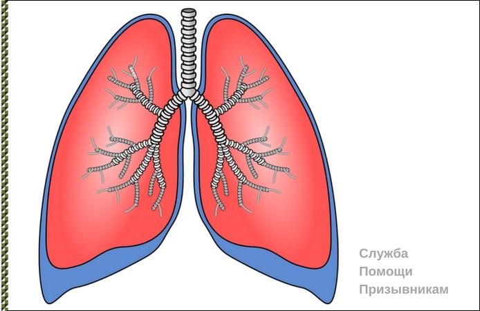 с астмой в армию