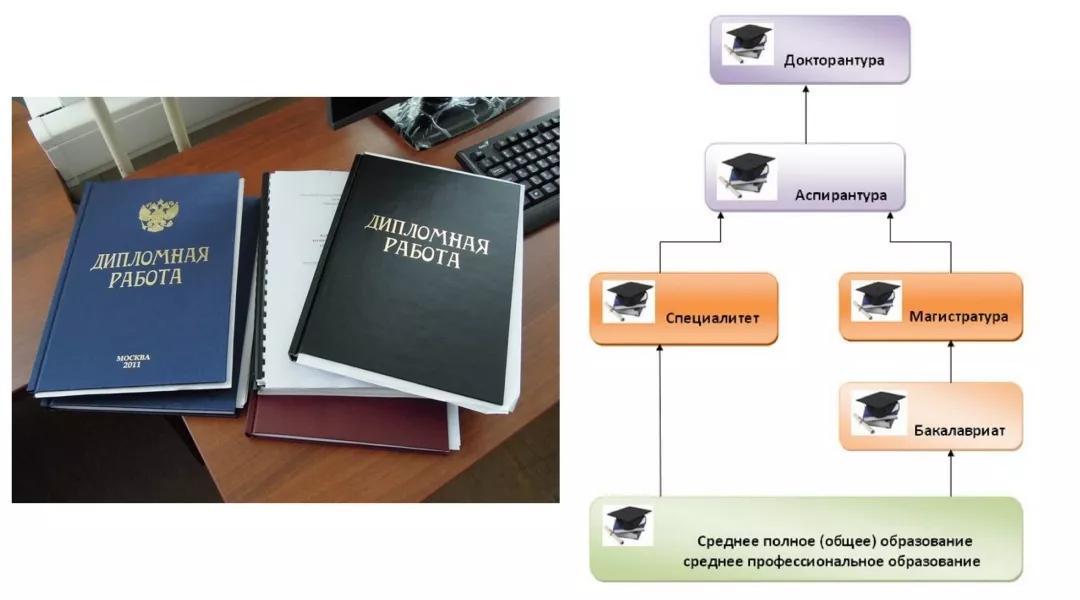 Ступени высшего образования